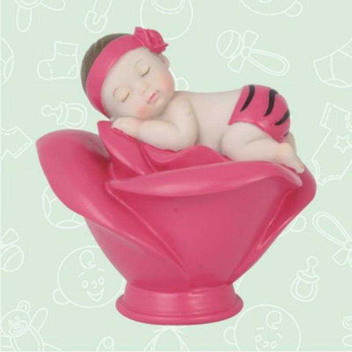 Strange Baby Sleeping In A Rose With Zebra Print Centerpiece Interior Design Ideas Clesiryabchikinfo